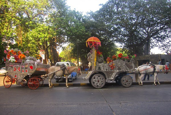 Carruajes de caballos para paseos turísticos | India | Stylefeelfree
