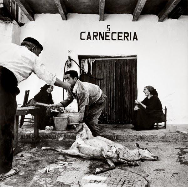 Obra: Carnicería de Fernando Gordillo | Stylefeelfree
