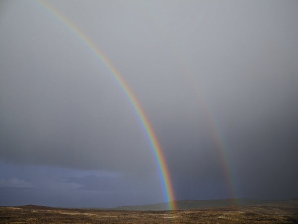obra Double Rainbow del artista Paul Graham que expone en la galería Pace de Nueva York | Stylefeelfree
