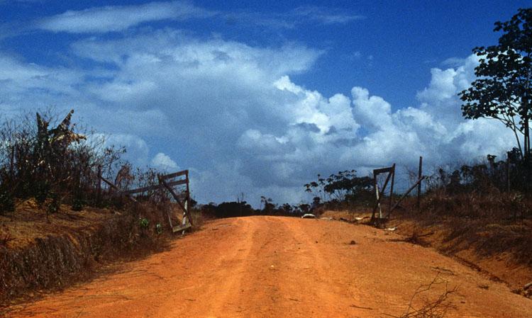 Monsoon, Doug Aitken | Stylefeelfree