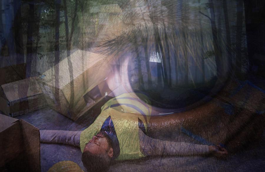 Agnieszka Polska. La extraña poesía de la naturaleza